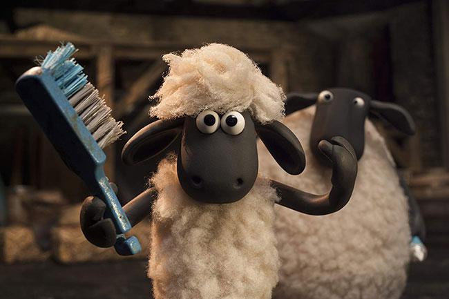 Cừu quê ra phố