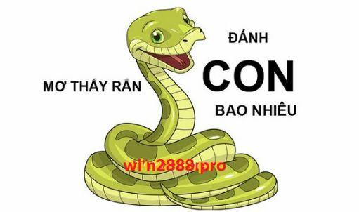 Mo Thay Ran Danh Con Gi