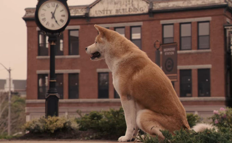 "The Film Sufi: ""Hachi: A Dog's Tale"" - Lasse Hallström (2009)"