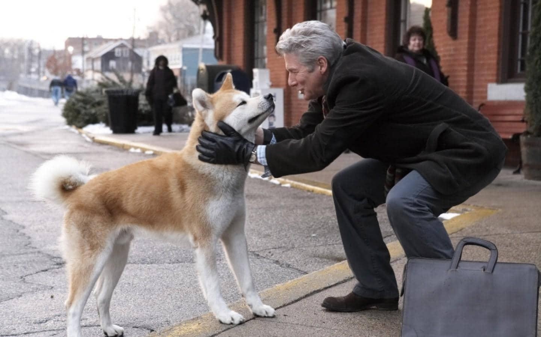 Hachi A Dog's Tale tình bạn cảm động